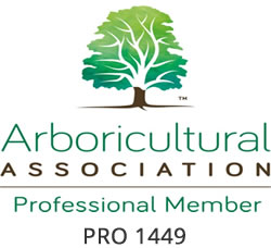 Tree Investment arboricultural consultants are proud members of the Arboricultural Association